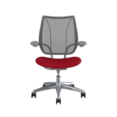 <p><span>Frame:</span> Polished Aluminum With Silver Trim</p><p>Adjustable Duron Arms</p>  <p><span>Backrest:</span> Pinstripe/Graphite</p>  <p><span>Seat:</span> Oxygen/Liberty</p> Picture 2